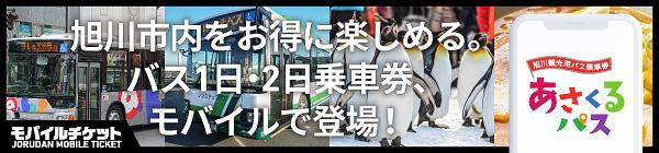 旭川観光用バス乗車券 あさくるパス