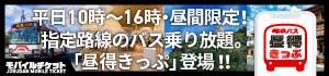 岐阜バス 昼得きっぷ