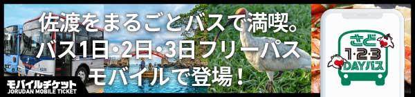 新潟交通佐渡 佐渡1day・2day・3dayパス